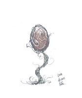 Plant Doodle by bensigas