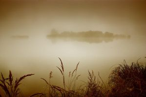 Foggy Island by vlastas
