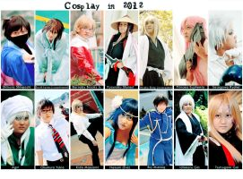 Cosplays in 2012 by HRecycleBin