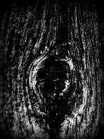 wood by TimTindall