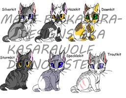 Warrior Cats-Kits 1 GONE by Kasara-Designs