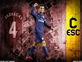 Cesc by arselife