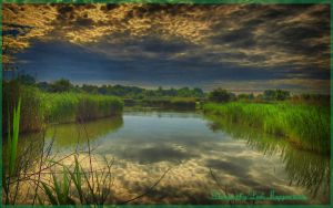 Hungarian landscapes.HDR-picture(photo series)17. by magyarilaszlo
