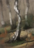 Birch Trees 1 Hour Speed Paint by CrayonMechanic