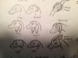 Mythical dog type: Extra traits 2 (2 of 4) by Dinoboy134