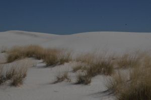 White Sands National Monument New Mexico (2) by MikeysPhotos