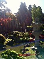 Japanese Tea Garden by writegina2