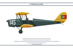 Tiger Moth Portugal 1 by WS-Clave