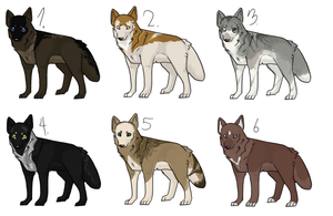 Natural Wolf: Set of Six by Purple--Turtle