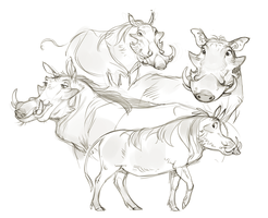 Warthogs by Drkav