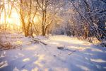 A Winter's Day by MarcoHeisler