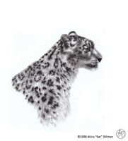 Snow Leopard 1 by KatGirlStudio