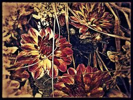 Bundle of Flowers v.8 by Scorpion31