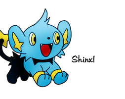 Shinx by Ausadriel