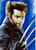 Wolverine by JohnMonteiro