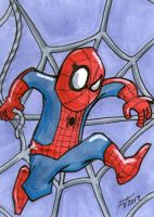 Spider-Man Sketch Card by johnnyism