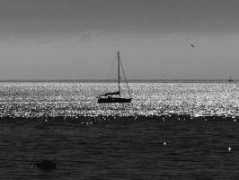 Sailing Away BW by philippeL