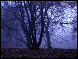 Automne by illea
