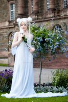 The Princess' Moon-Garden by ScaredyCatCosplay