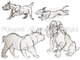 Animal Studies . Dogs 2 by Sorren-Chan