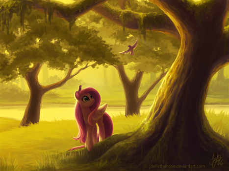 Golden Hour by JoelletheNose