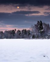 Winter landscape in Sweden by msun