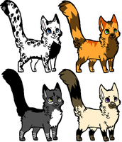 .:Cat Adoptables:. by Storming-Adopts