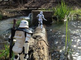 Storm Troopers Crossing Log by TheLittlestGiant