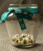 Daisies in a Jar by Seqbre
