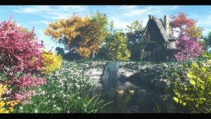 the pond by binouse49