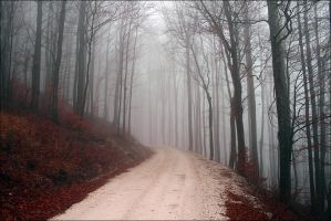 You Can't Keep Me Here by ATAPLATA