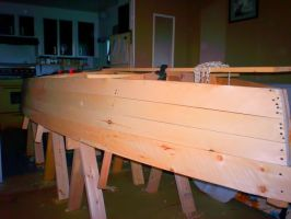 the boat side planked by cocobolo