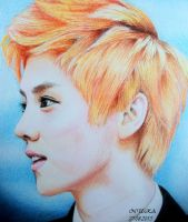 LUHAN (Colour Drawing) by diamondnura