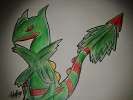 M.Sceptile by Thunder2910