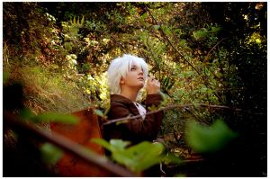 Mushi-Shi: The Green Seat by bekalou-cosplay
