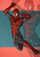 spidy by alexeuses