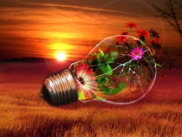 Bulb by s-i-y-a-n-a