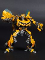 Custom HA Bumblebee by xenethis