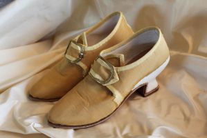 Silk Shoes by ColeV