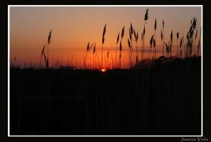 Sunset at gardiners park by javv556