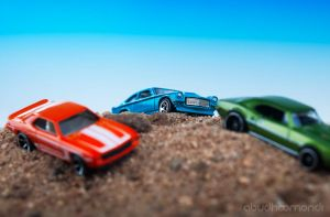 Safari Rally by Pixcaliba