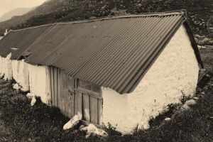 Old tin roof by pnewbery