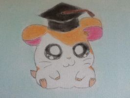 Hamtaro with graduation hat by 4evanimation