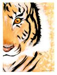 Year of the tiger by Noiry