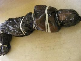 corpse in a binbag. by Blue-Fayt