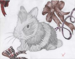 MacLeod/Burberry bunny by steampunkSkittles