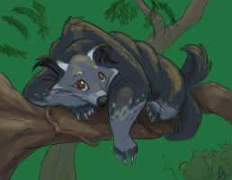 Critter Jam - Binturong by SuperStinkWarrior
