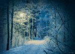 Feel the cold by m-eralp