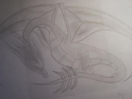 Dragon by beautifully0chaotic