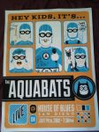 Aquabats Concert Poster by Closer-To-The-Sun
